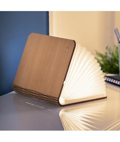 LAMPE LIVRE - GINGKO - MINI SMART BOOK LIGHT - ERABLE
