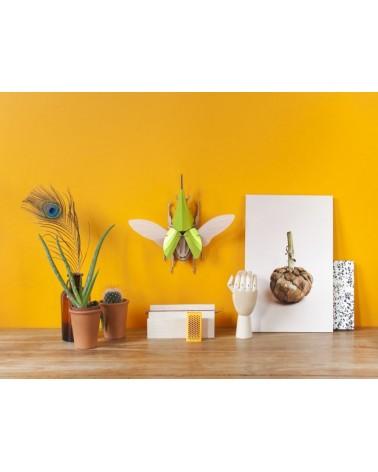 PLUZZLE 3D SCARABÉE HERCULE ASSEMBLI - L'interprète Concept Store