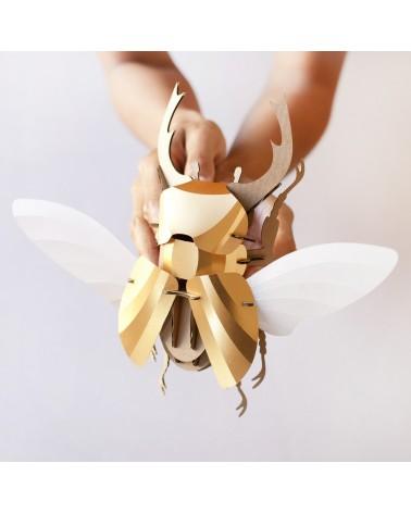 Puzzle 3D scarabée stag Assembli - L'interprète Concept Store