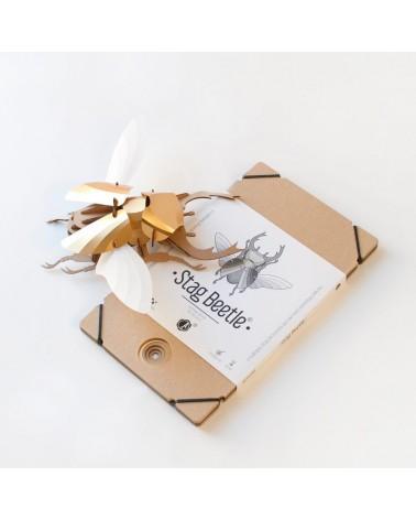 Puzzle 3D - Scarabée - Stag Assembli - Construisez-vous même - L'interprète Concept Store